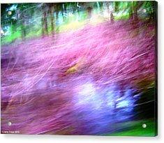 Pink Acrylic Print by Jane Tripp
