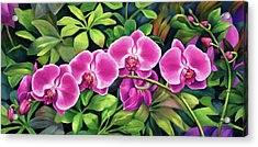 Pink Jungle Orchids Acrylic Print