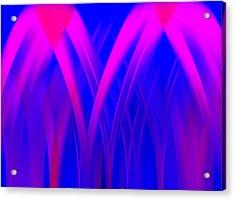 Pink Lacing Acrylic Print by Carolyn Marshall