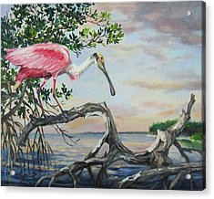 Pink Lady Acrylic Print by Dianna  Willman