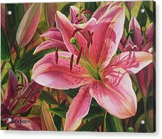Pink Liliums Acrylic Print by Karen  Sioson