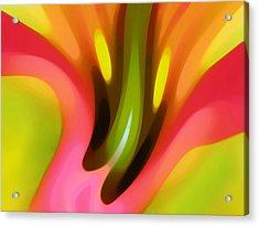 Pink Lily Horizontal Acrylic Print by Amy Vangsgard