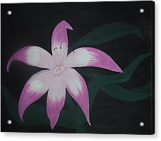 Pink Lily Acrylic Print by Melanie Blankenship