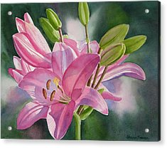 Pink Lily With Buds Acrylic Print by Sharon Freeman