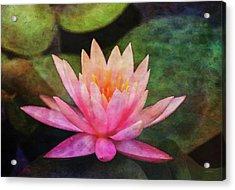 Pink Lotus 4134 Idp_2 Acrylic Print