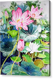 Pink Lotus And White Water Lilies Acrylic Print