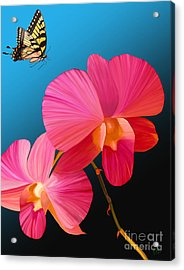 Acrylic Print featuring the painting Pink Lux Butterfly by Rand Herron