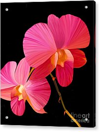 Acrylic Print featuring the painting Pink Lux by Rand Herron