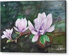 Pink Magnolia - Painting Acrylic Print
