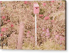Acrylic Print featuring the photograph Pink Nesting Box by Bonnie Bruno