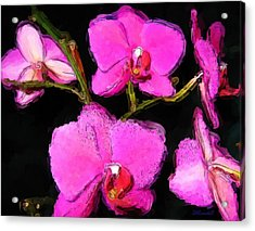 Acrylic Print featuring the photograph Pink Orchids by Dennis Lundell