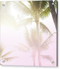 Acrylic Print featuring the photograph Pink Palms by Cindy Garber Iverson