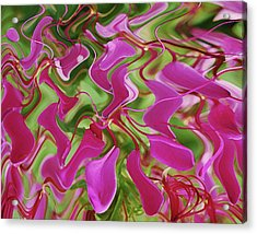 Pink Party Acrylic Print
