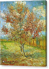 Pink Peach Tree In Blossom Reminiscence Of Mauve Acrylic Print by Vincent Van Gogh