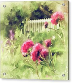 Pink Peonies In A Vintage Garden Acrylic Print by Lois Bryan