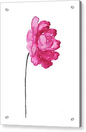Pink Peony, Nursery Decor Wall Art Print, Abstract Illustration Acrylic Print