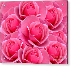 Pink Pink Roses Acrylic Print