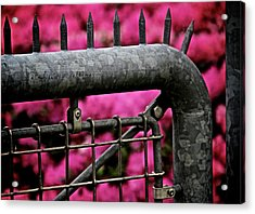 Pink Poison Acrylic Print by Odd Jeppesen