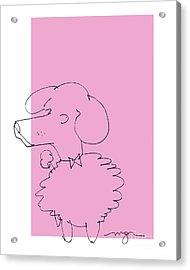 Pink Poodle Acrylic Print