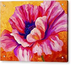 Pink Poppy Acrylic Print by Marion Rose