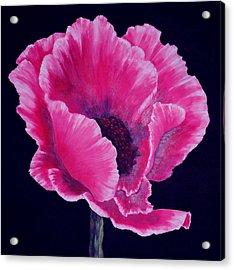 Pink Poppy Acrylic Print by SueEllen Cowan