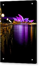 Pink Projections Acrylic Print