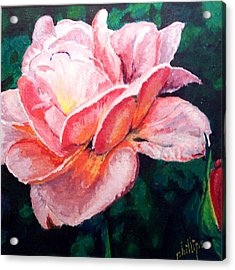 Acrylic Print featuring the painting Pink Rose by Jim Phillips