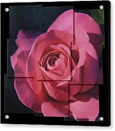 Pink Rose Photo Sculpture Acrylic Print