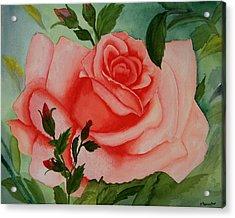 Pink Rose Acrylic Print by Robert Thomaston