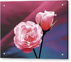 Pink Roses Acrylic Print by Jan Baughman