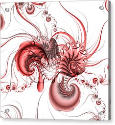 Pink Shrimp Acrylic Print by David April