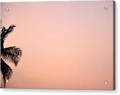 Pink Skies Acrylic Print by Corinne Rhode