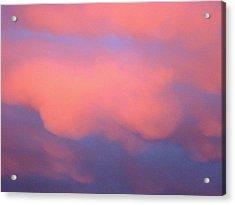 Pink Sky Acrylic Print by Marcia Crispino