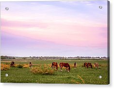 Acrylic Print featuring the photograph Pink Sky Night by Melinda Ledsome