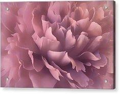 Acrylic Print featuring the photograph Pink Splash by Darlene Kwiatkowski