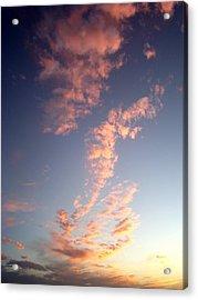 Pink Sunset One Acrylic Print by Ana Villaronga
