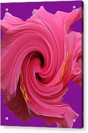 Pink Swirl Hibiscus Flower Acrylic Print