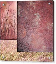 Pink Textures Acrylic Print by Lori Deiter