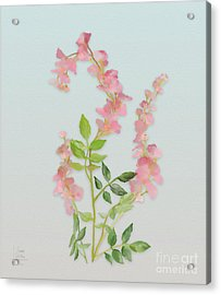 Acrylic Print featuring the painting Pink Tiny Flowers by Ivana Westin
