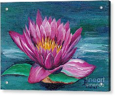 Pink Water Lily Original Painting Acrylic Print by Brenda Thour
