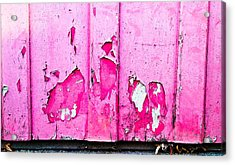 Pink Wood With Peeling Paint  Acrylic Print by Tom Gowanlock