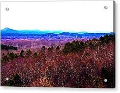 Pinnacle Valley Acrylic Print by Tom Herrin