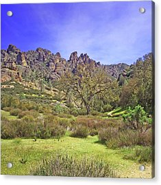 Acrylic Print featuring the photograph Pinnacles National Park Watercolor by Art Block Collections