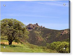 Acrylic Print featuring the photograph Pinnacles Vista by Art Block Collections