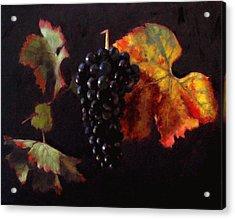 Pinot Noir Grape With Autumn Leaves Acrylic Print by Takayuki Harada