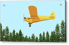 Piper Cub Piper J3 Acrylic Print
