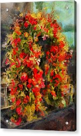 Pi's Flowers 2 Acrylic Print