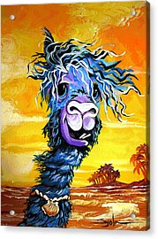 Acrylic Print featuring the painting Pisco The Surfing Alpaca by Patty Sjolin