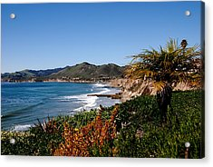 Pismo Beach California Acrylic Print by Susanne Van Hulst