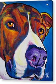 Pit Bull - Eric Acrylic Print by Alicia VanNoy Call